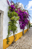 Blommagata, Obidos, Portugal Royaltyfri Foto
