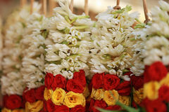 Blommagirland i lilla Indien, Singapore Royaltyfri Bild