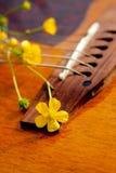 blommagitarr Royaltyfri Fotografi