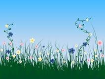 blommagräs vektor illustrationer