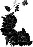 blommagrässilhouettes royaltyfri illustrationer