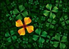 blommagreen låter vara orangen Arkivbild