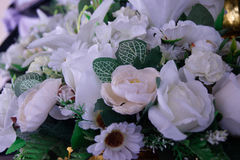 Blommagrupp Royaltyfria Bilder