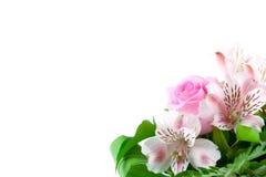 blommahälsningar Royaltyfri Bild