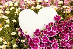 blommahälsningshjärta Arkivbild