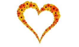 blommahärd Royaltyfri Fotografi