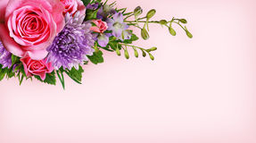 Blommahörn på rosa bakgrund Arkivbild