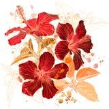blommahibiskusvattenfärg Arkivbild