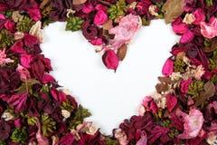 blommahjärta arkivfoton