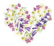 Blommahjärta av löst, skogblommor vektor illustrationer