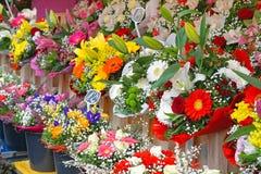 blommaillustrationen shoppar smellcomp Arkivbild