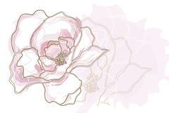 blommaillustrationpink Royaltyfria Bilder
