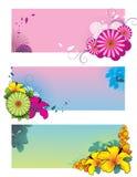 blommaillustrationvektor Arkivfoton
