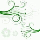 blommaillustrationvektor Royaltyfri Bild