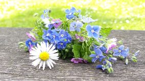 Blommainspiration Arkivfoto