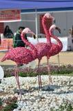 Blommakonst - flamingofåglar Arkivfoton