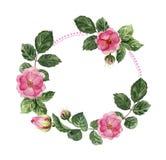 Blommakrans med rosor vektor illustrationer