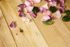 Blommakronblad på ljus träbakgrund Arkivbild