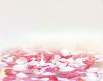 Blommakronblad på vattenbakgrund Arkivbilder
