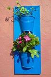 Blommakrukar på en vägg Arkivbild