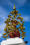 Blommakulturföremål Royaltyfri Fotografi