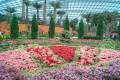Blommakupol, trädgårdar vid fjärden Royaltyfria Bilder