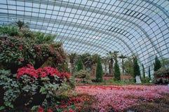 Blommakupol, trädgårdar vid fjärden Arkivfoton