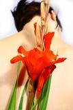blommakvinnor Arkivfoto