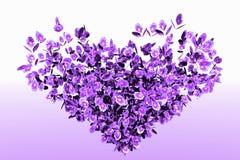 blommalövverk Royaltyfria Bilder