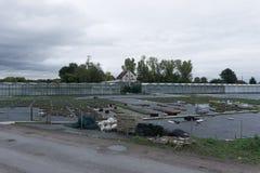 Blommalantgård med växthus royaltyfri fotografi