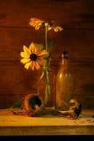 blommalivstid yellow fortfarande fotografering för bildbyråer