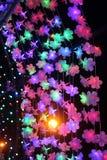 Blommaljus i natten Fotografering för Bildbyråer