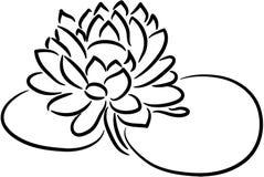 blommalotusblomma vektor illustrationer