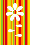 blommamall Arkivfoto