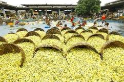 Blommamarknad Arkivfoto
