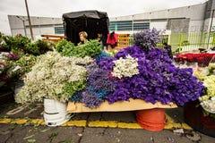Blommamarknad i Paloquemao Bogota Colombia Arkivfoton