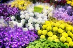 Blommamarknad i Taipei - Taiwan Fotografering för Bildbyråer