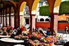 blommamarknad mexico Arkivbild