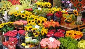 blommamarknader arkivfoton
