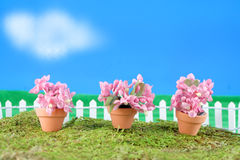 blommaminiatyrfjäder Arkivbilder