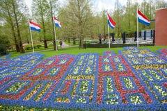 Blommamodell i vårträdgården Keukenhof, Lisse, Nederländerna royaltyfria bilder