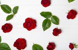 Blommamodell som göras från röda rosor och sidor Arkivbild
