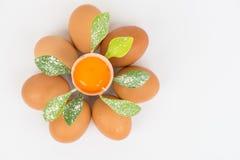 Blomman av ägget Arkivfoto