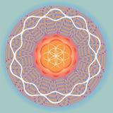 Blomman av liv kärnar ur fjädrar mandala-bruk för design och meditation Royaltyfri Foto