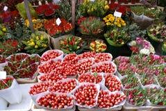 Blomman marknadsför Arkivbild