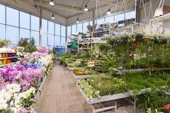 Blomman och trädgårds- utrustning shoppar Royaltyfri Fotografi