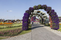 Blomman parkerar i Dubai (den Dubai mirakelträdgården) förenade arabiska emirates Royaltyfri Fotografi