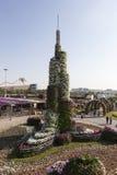 Blomman parkerar i Dubai (den Dubai mirakelträdgården) förenade arabiska emirates Royaltyfria Bilder