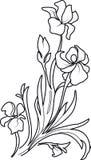 Blomman skissar uppsättningen vektor illustrationer