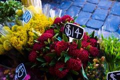 Blomman stannar ordningar royaltyfri fotografi